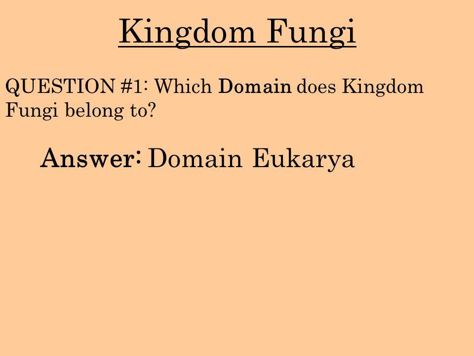 Kingdom Fungi Answer: Domain Eukarya QUESTION #1: Which Domain does Kingdom Fungi belong to?