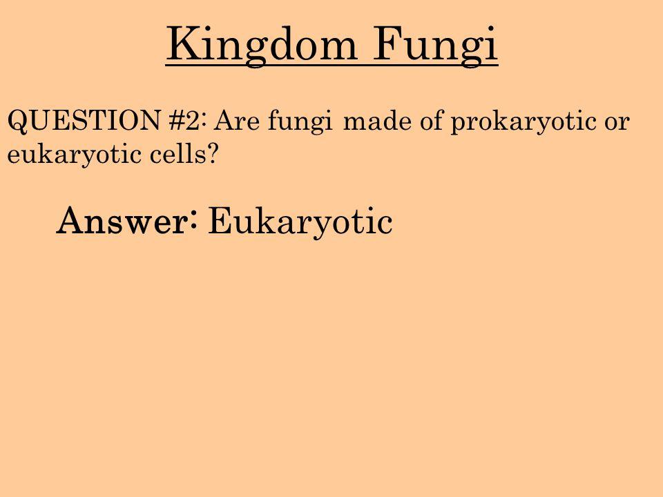 Kingdom Fungi Answer: Eukaryotic QUESTION #2: Are fungi made of prokaryotic or eukaryotic cells?