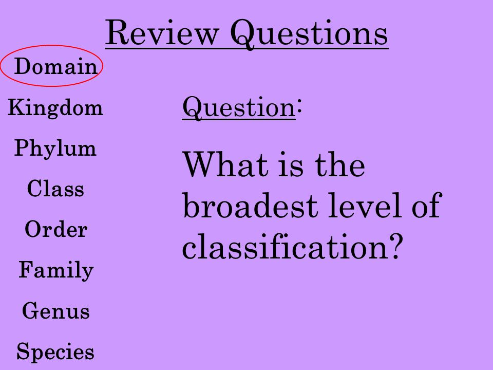 Review Questions Domain Kingdom Phylum Class Order Family Genus Species Question: What is the broadest level of classification?