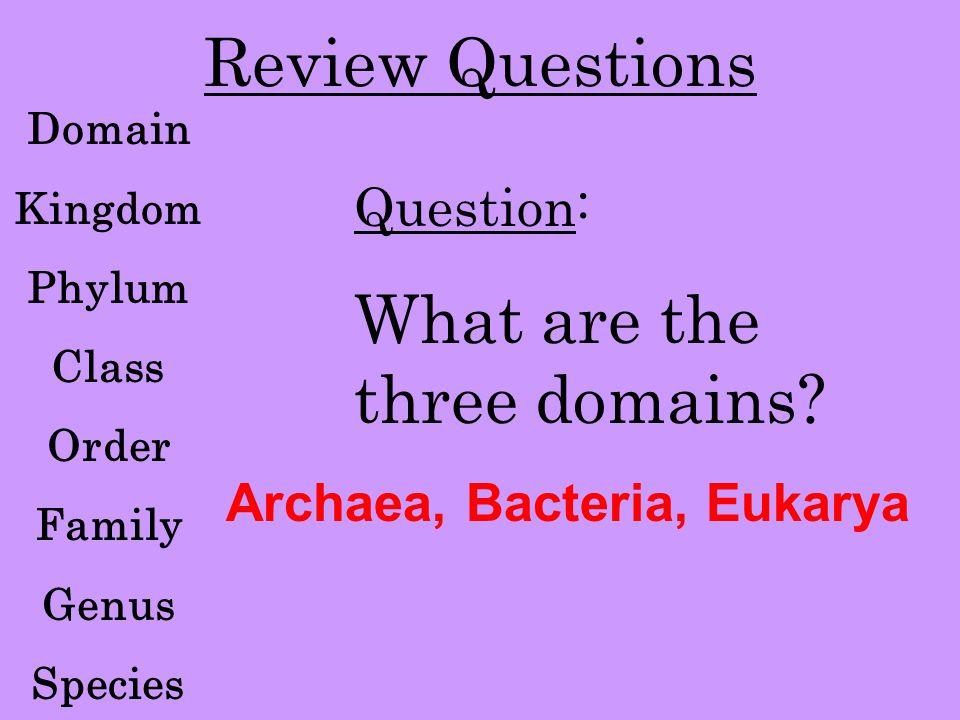 Kingdom Animalia Answer: Domain Eukarya QUESTION #1: Which Domain does Kingdom Animalia belong to?