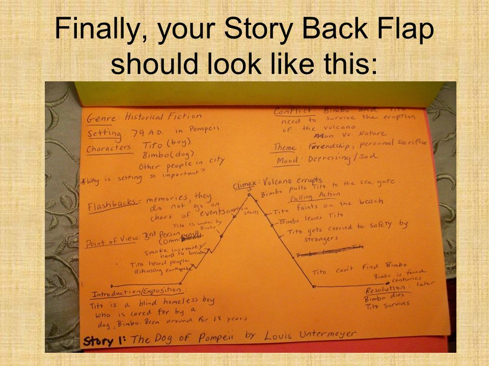 Finally, your Story Back Flap should look like this: