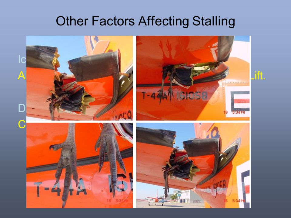 Other Factors Affecting Stalling Ice: Alters the 'Shape' of the wing, this will reduce Lift. Damage: Can also reduce Lift ie after a 'Birdstrike'.
