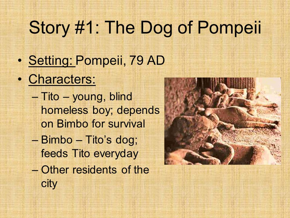 Story #1: The Dog of Pompeii Setting: Pompeii, 79 AD Characters: –Tito – young, blind homeless boy; depends on Bimbo for survival –Bimbo – Tito's dog;