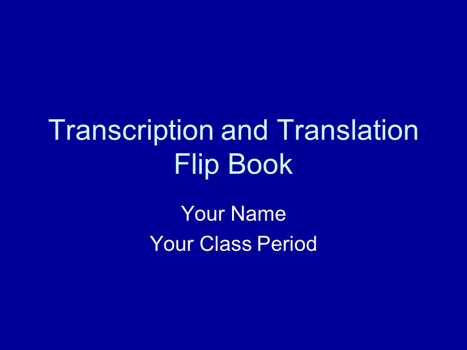 Transcription and Translation Flip Book Your Name Your Class Period
