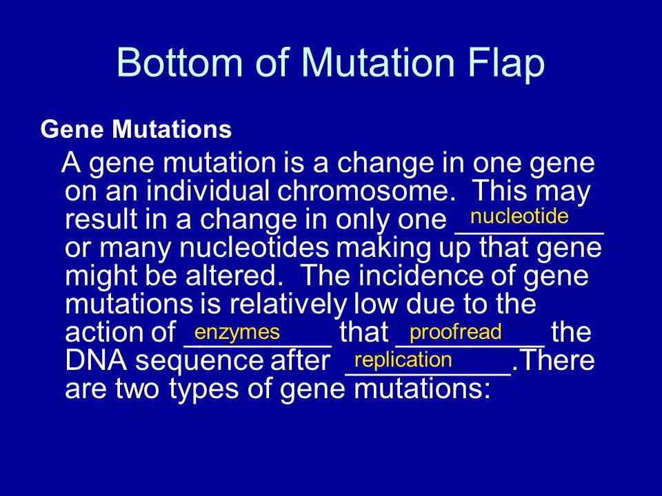 Bottom of Mutation Flap Gene Mutations A gene mutation is a change in one gene on an individual chromosome.