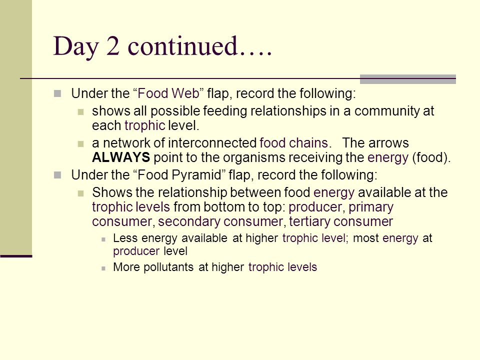 """Day 2 continued…. Under the """"Food Web"""" flap, record the following: shows all possible feeding relationships in a community at each trophic level. a ne"""