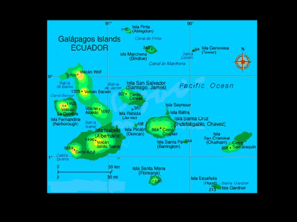 Major Ports of Call… Galapagos Islands –Location: Near equator, 1000km off west coast of S.