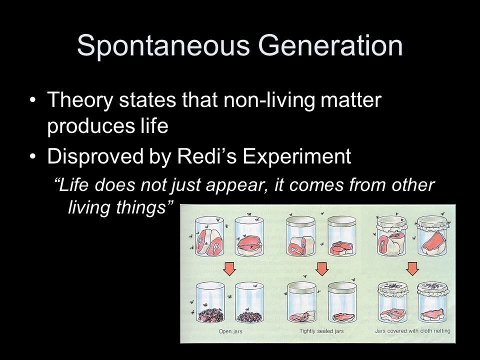 Biogenesis Theory that living things come from other living things Proven by Pasteur's experiment