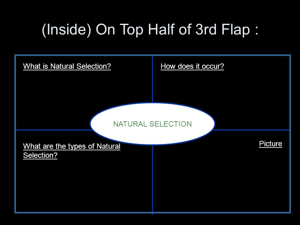 Natural Selection What is it.Change in an allele over a period of time How does it occur.