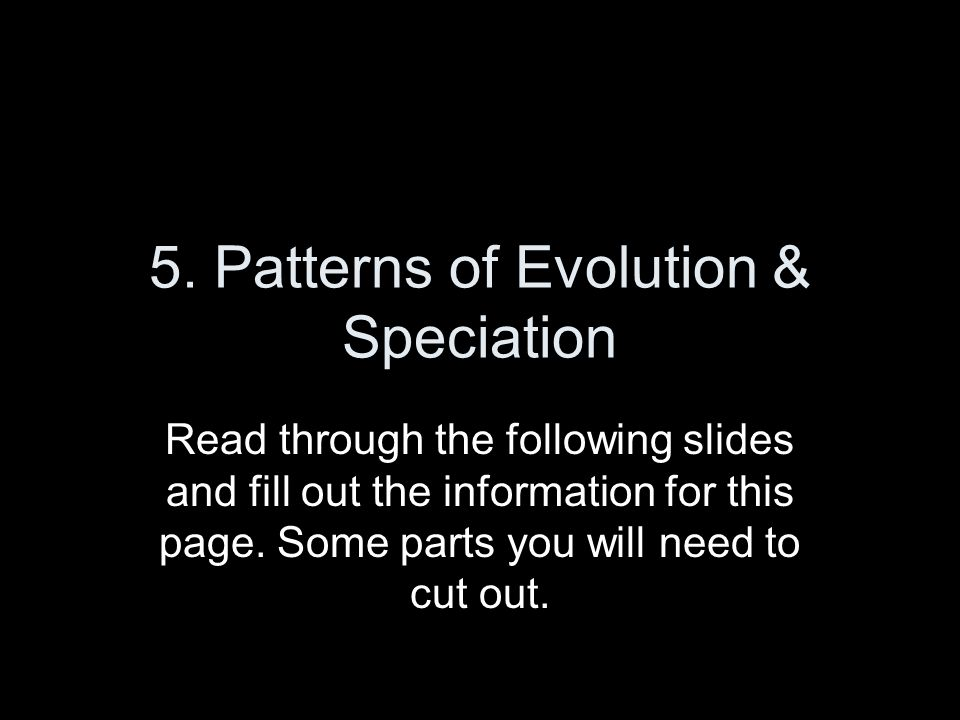 (Inside) On Top Half of 5th Flap write: Glue in the following picture & Label the following: Divergent Evolution Species that evolve to be different even though they come from a common ancestor Convergent Evolution Species that evolve to be similar to each other For example: they have similar structures