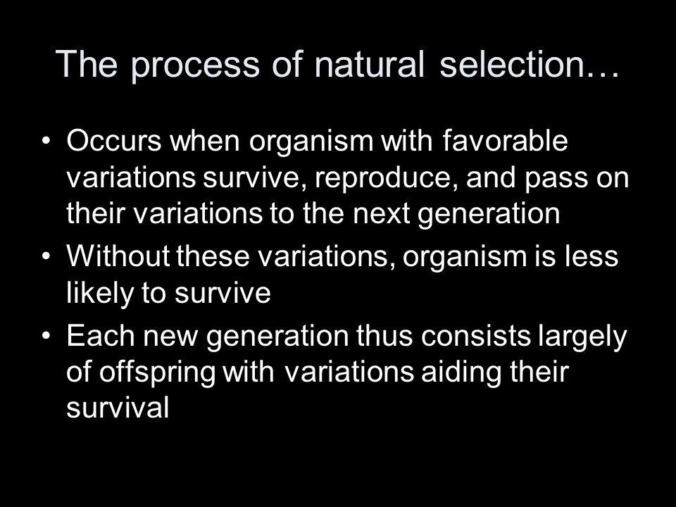 (Inside) On Bottom Half of 1 st Flap: Who is Darwin?Who is Malthus?
