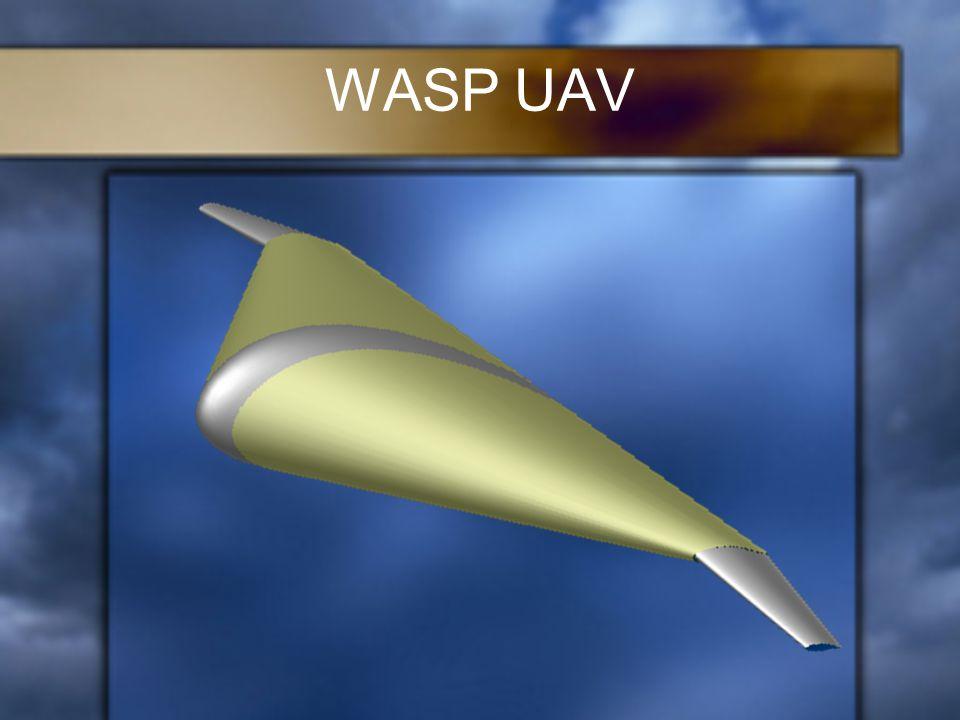 WASP UAV