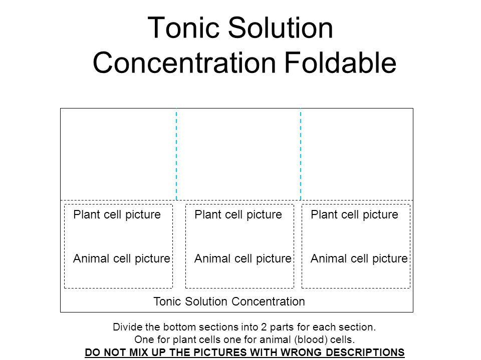 Tonic Solution Concentration Foldable Divide the bottom sections into 2 parts for each section. One for plant cells one for animal (blood) cells. DO N
