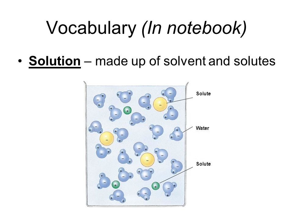 Vocabulary (In notebook) Solution – made up of solvent and solutes Solute Water