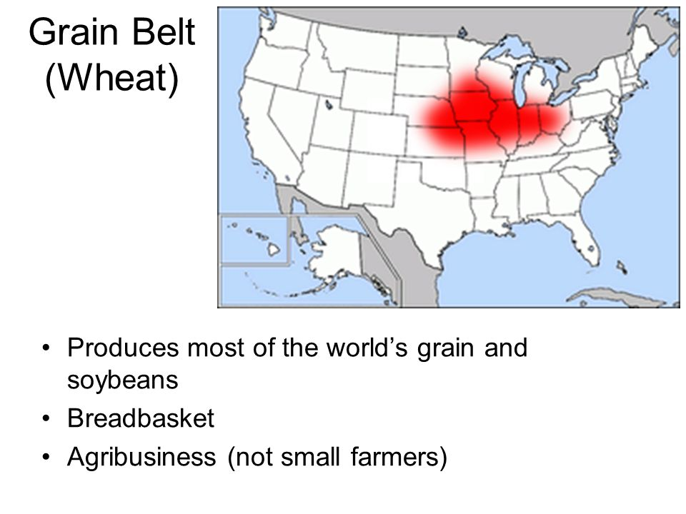 Grain Belt (Wheat) Produces most of the world's grain and soybeans Breadbasket Agribusiness (not small farmers)