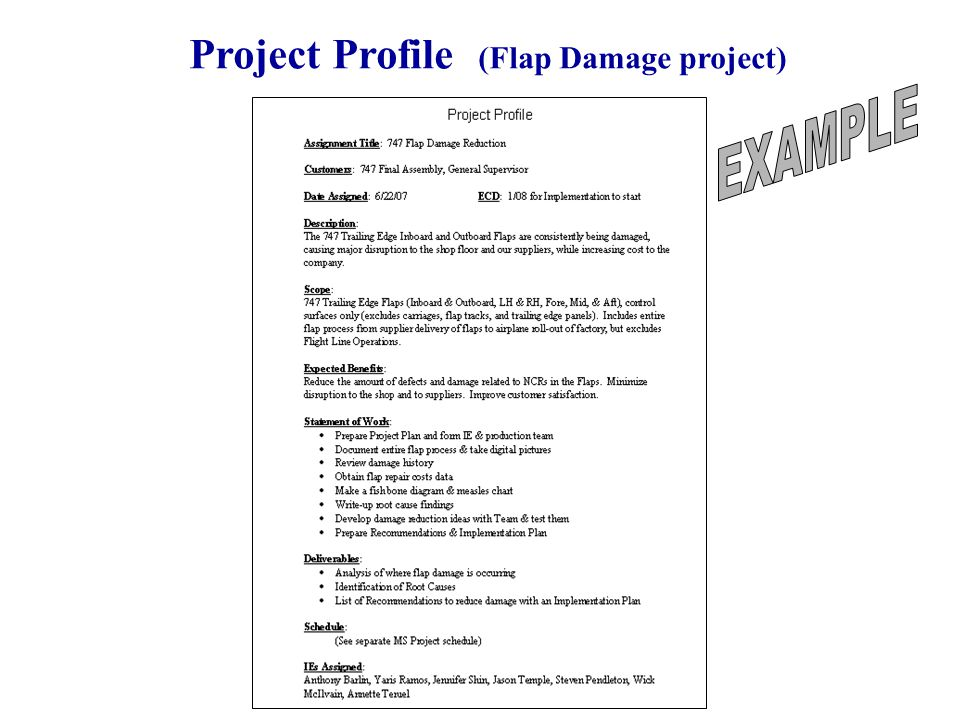 42 Project Profile (Flap Damage project)