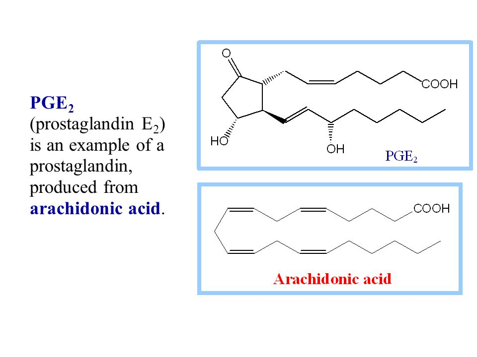 PGE 2 (prostaglandin E 2 ) is an example of a prostaglandin, produced from arachidonic acid.