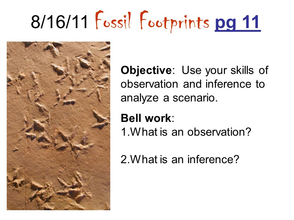 8/16/11 Fossil Footprints pg 11 Objective: Use your skills of observation and inference to analyze a scenario. Bell work: 1.What is an observation? 2.