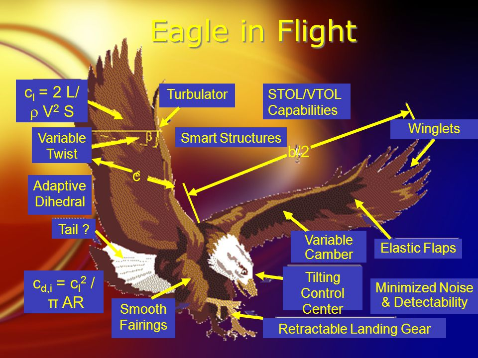 Eagle in Flight Winglets Elastic Flaps Minimized Noise & Detectability Variable Camber Retractable Landing Gear STOL/VTOL Capabilities Smart Structures Tilting Control Center Smooth Fairings Variable Twist Adaptive Dihedral Turbulator Tail .
