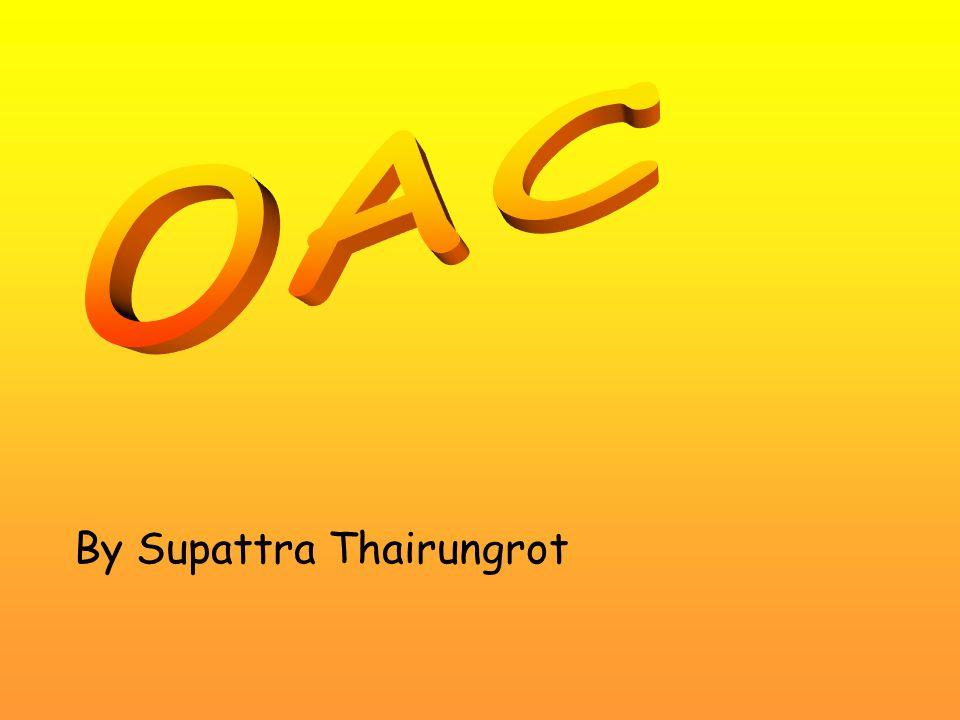 By Supattra Thairungrot