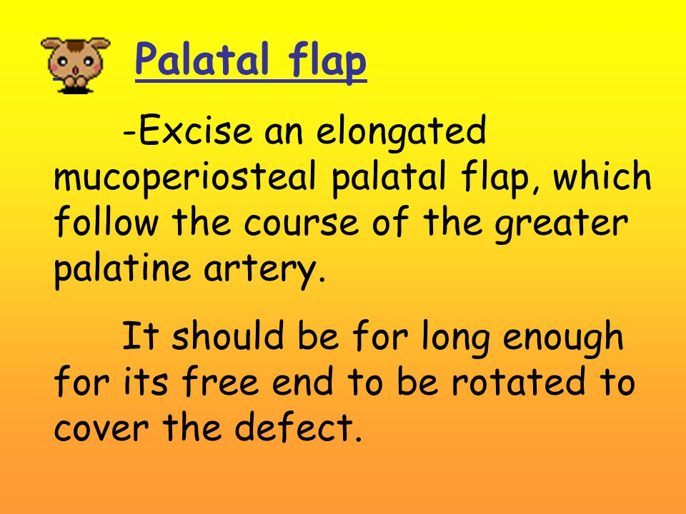 Palatal flap -Excise an elongated mucoperiosteal palatal flap, which follow the course of the greater palatine artery.