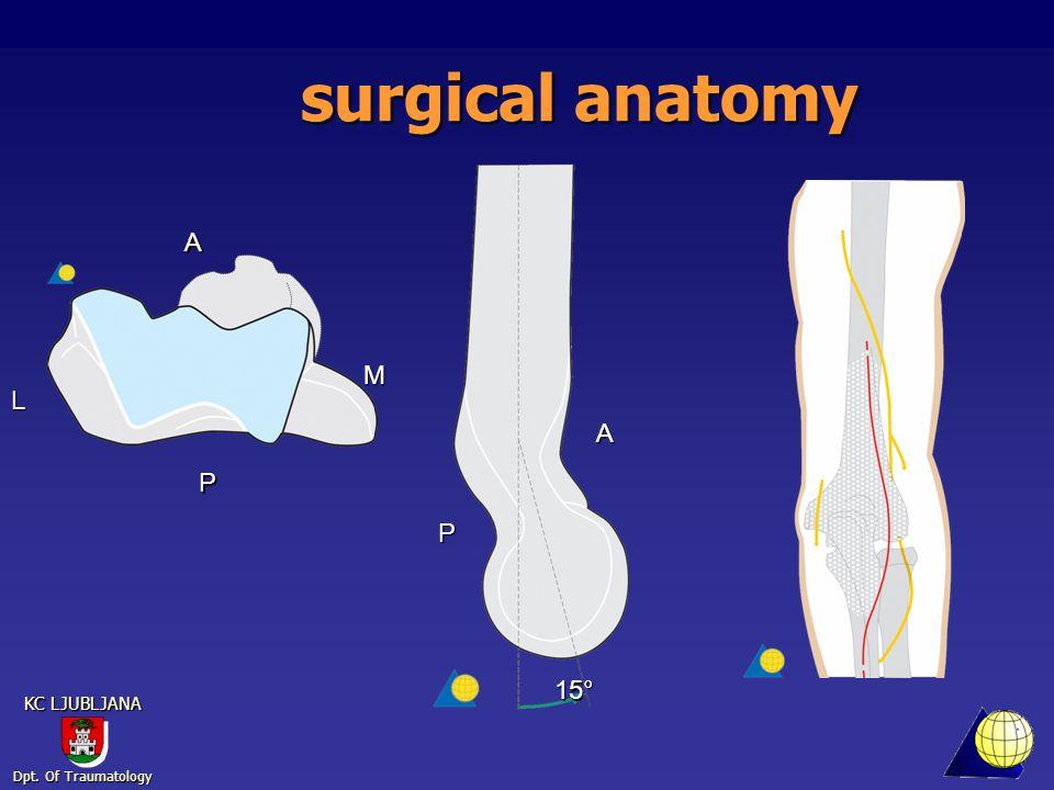 Dpt. Of Traumatology KC LJUBLJANA surgical anatomy 15° P A A P M L