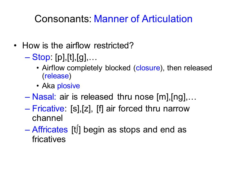 Places of articulation http://www.chass.utoronto.ca/~danhall/phonetics/sammy.html labial dental alveolar post-alveolar/palatal velar uvular pharyngeal