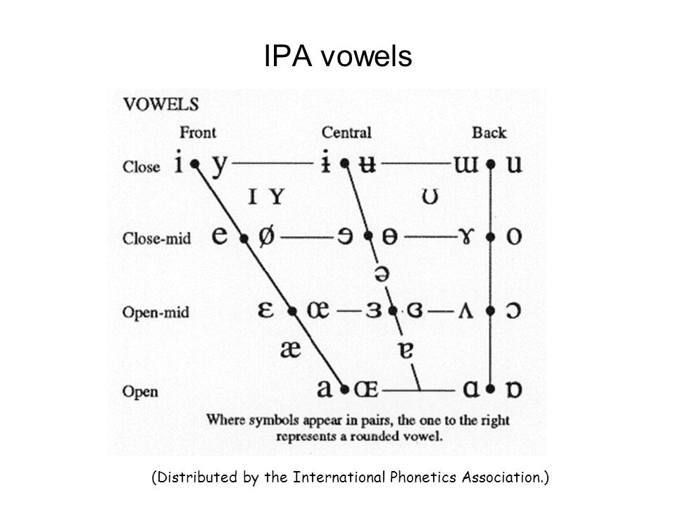 IPA consonants (Distributed by the International Phonetics Association.)