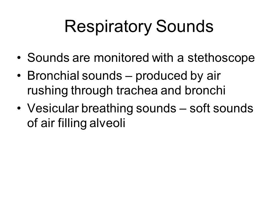 Respiratory Sounds Sounds are monitored with a stethoscope Bronchial sounds – produced by air rushing through trachea and bronchi Vesicular breathing