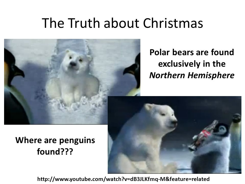The Truth about Christmas http://www.youtube.com/watch?v=dB3JLKfmq-M&feature=related Polar bears are found exclusively in the Northern Hemisphere Where are penguins found???