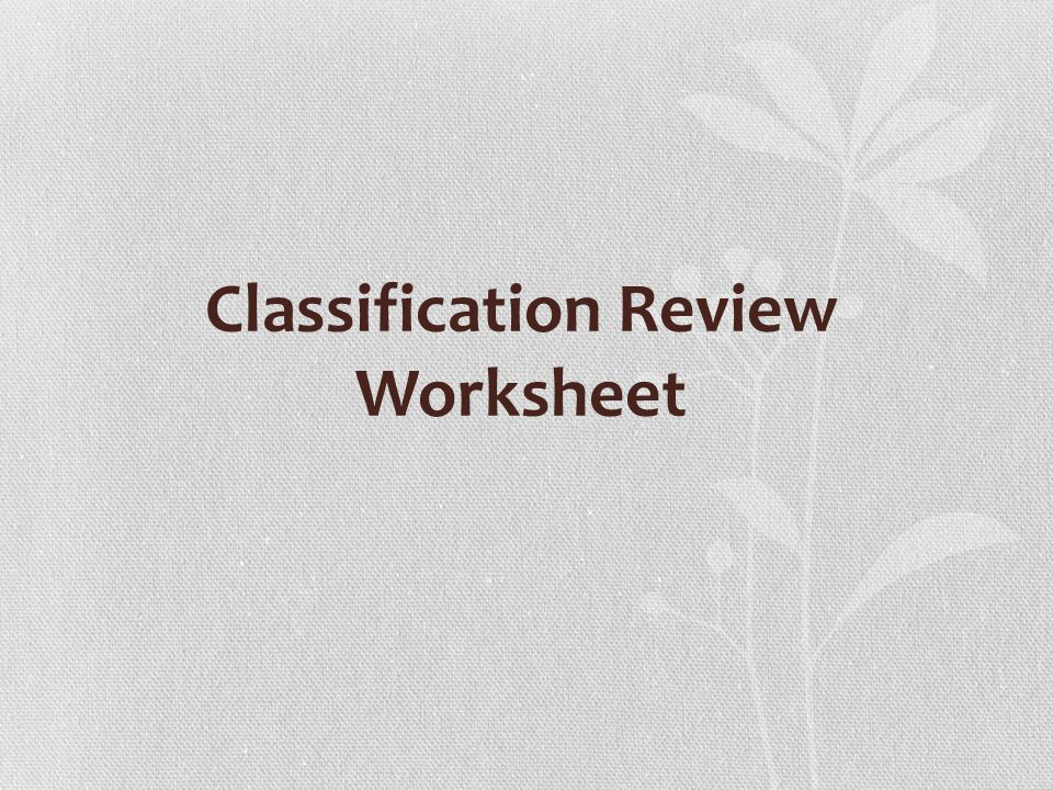 Classification Review Worksheet