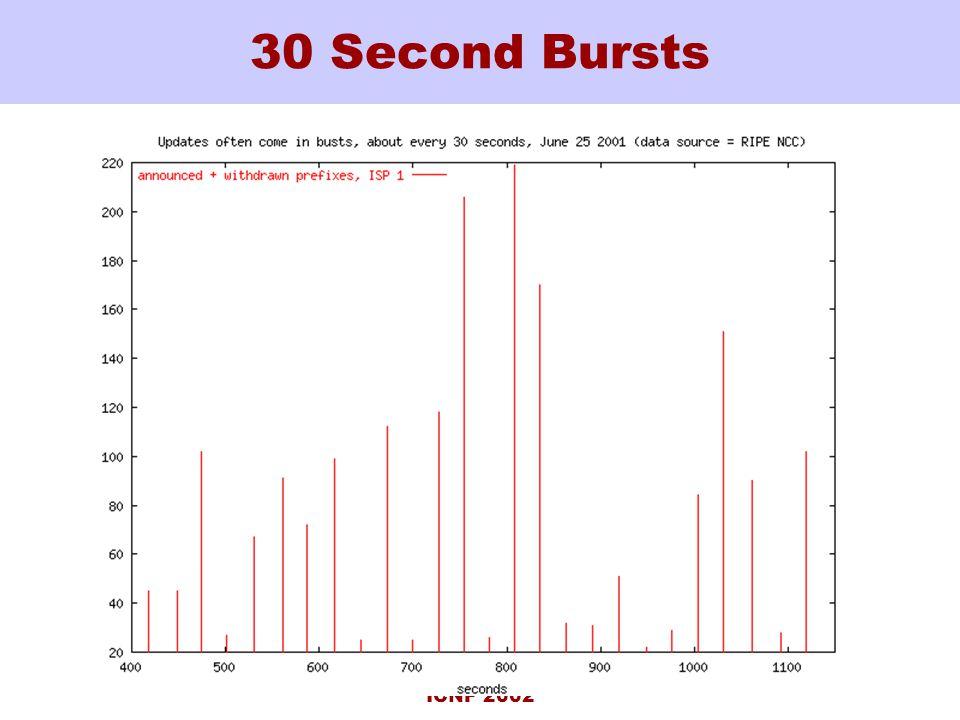 ICNP 2002 30 Second Bursts