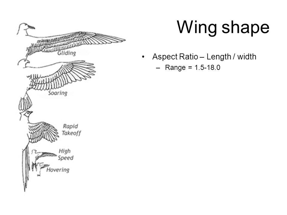 Wing shape Aspect Ratio – Length / width –Range = 1.5-18.0