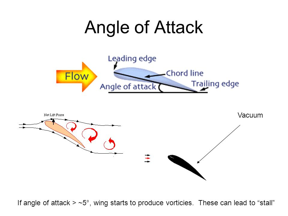 Solution = alula (bastard wing) Particularly important at low speeds and high angles of attack