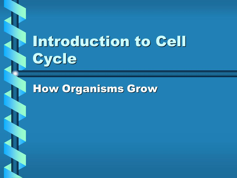Introduction to Cell Cycle How Organisms Grow