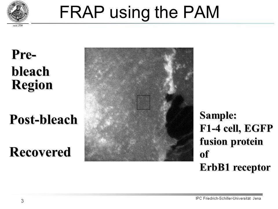 IPC Friedrich-Schiller-Universität Jena 3 FRAP using the PAM Pre- bleach Post-bleach RecoveredRegion Sample: F1-4 cell, EGFP fusion protein of ErbB1 receptor