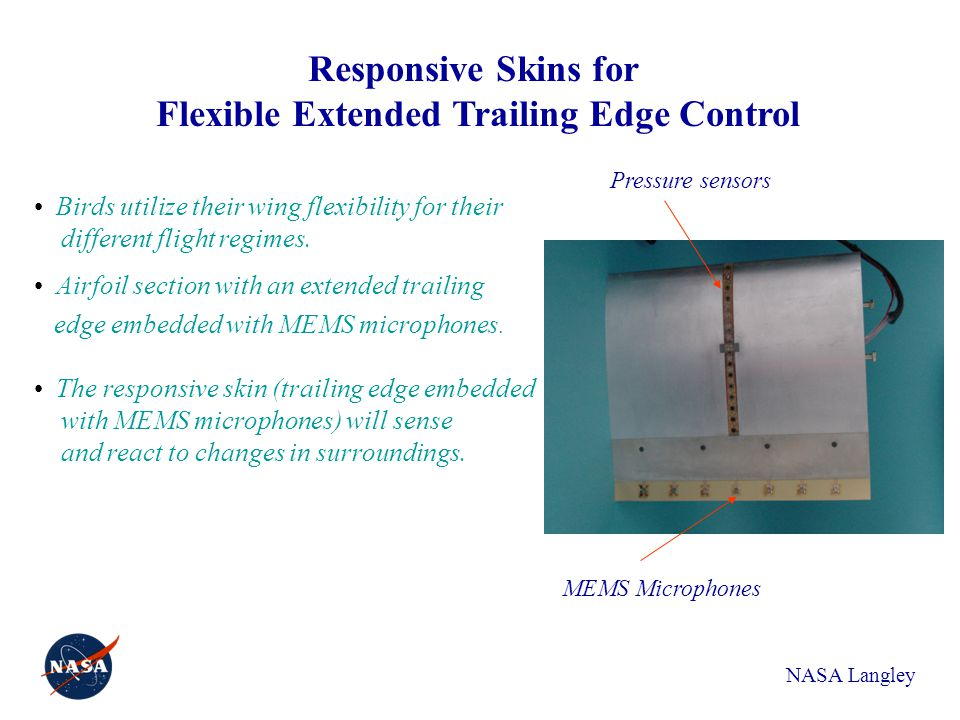 Responsive Skins for Flexible Extended Trailing Edge Control MEMS Microphones Birds utilize their wing flexibility for their different flight regimes.