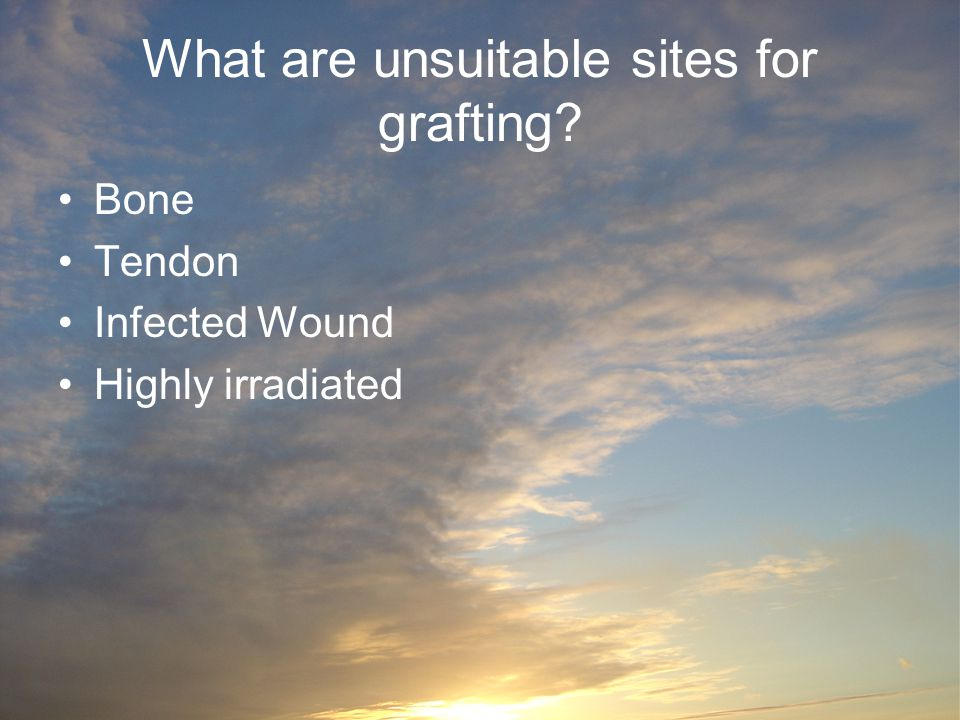 What are unsuitable sites for grafting? Bone Tendon Infected Wound Highly irradiated
