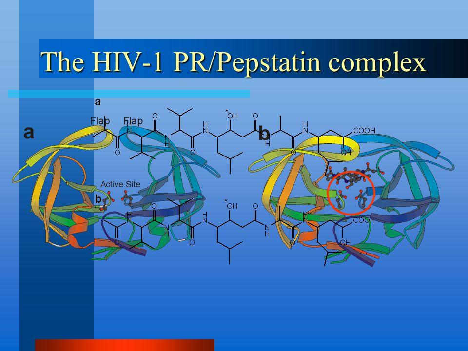 The HIV-1 PR/Pepstatin complex