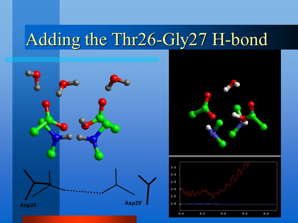 Adding the Thr26-Gly27 H-bond