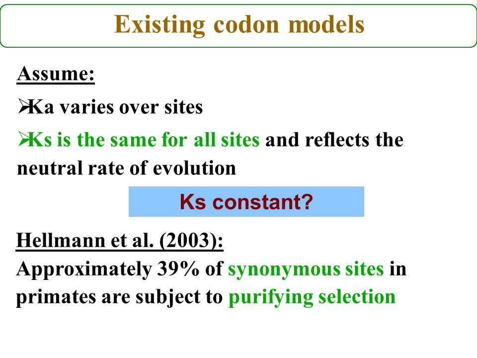 Existing codon models Hellmann et al. (2003): Approximately 39% of synonymous sites in primates are subject to purifying selection Assume:  Ka varies