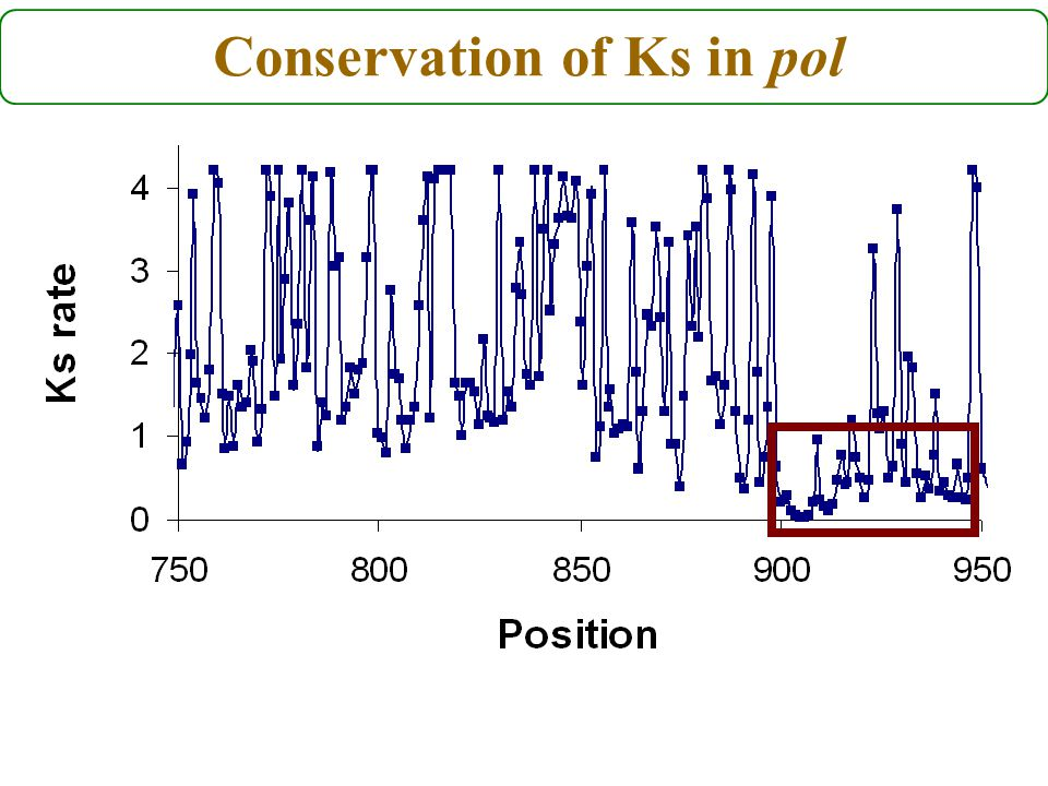 Conservation of Ks in pol
