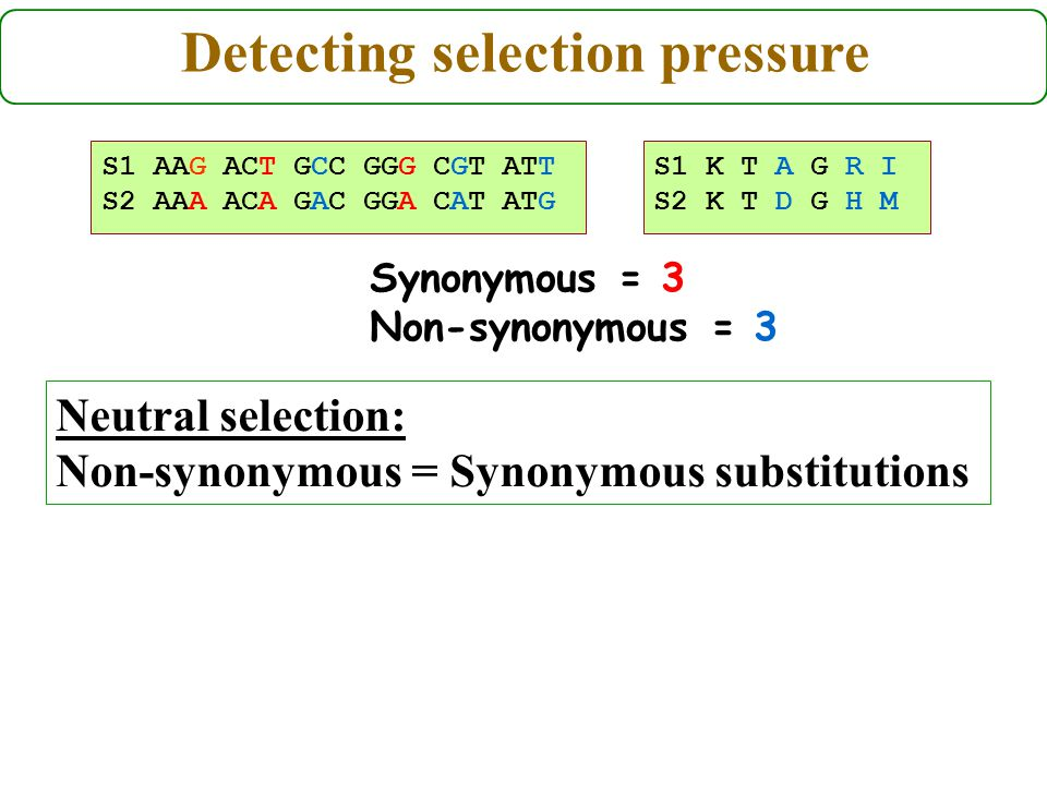 S1 AAG ACT GCC GGG CGT ATT S2 AAT ATT GAC GAG CAT ATG S1 K T A G R I S2 N I D E H M Host-pathogen arm-race Detecting selection pressure Positive (Darwinian) selection : Non-synonymous >> Synonymous substitutions Synonymous = 0 Non-synonymous = 6