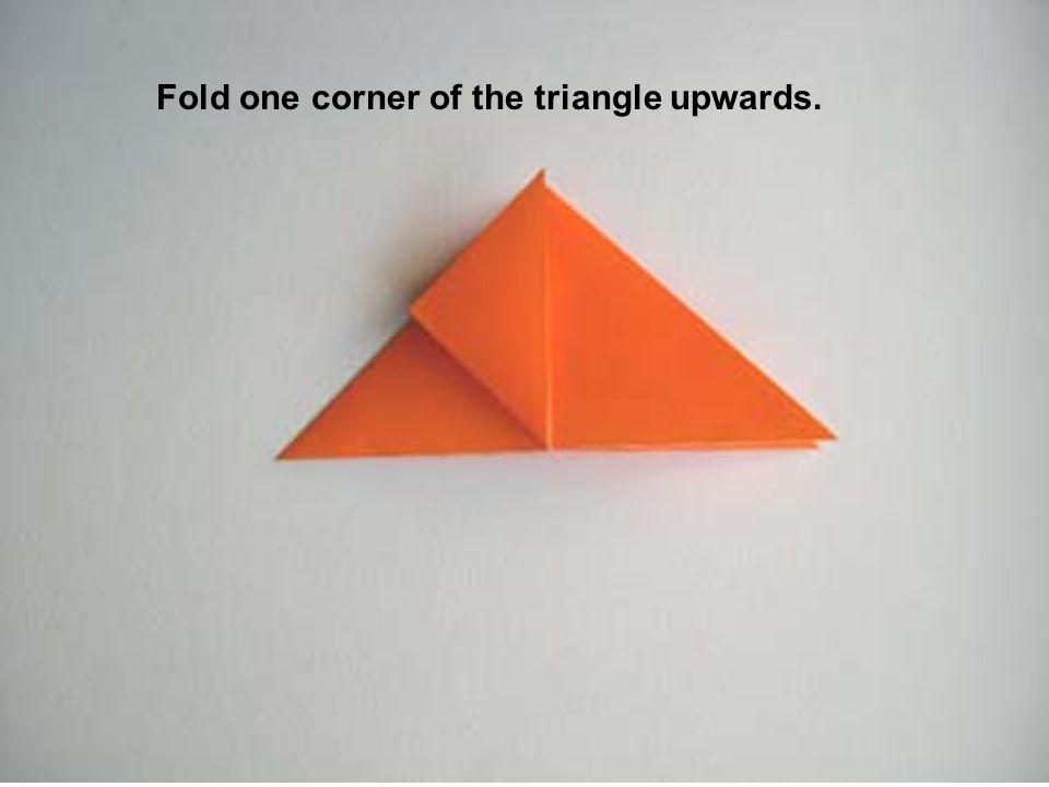 Fold one corner of the triangle upwards.