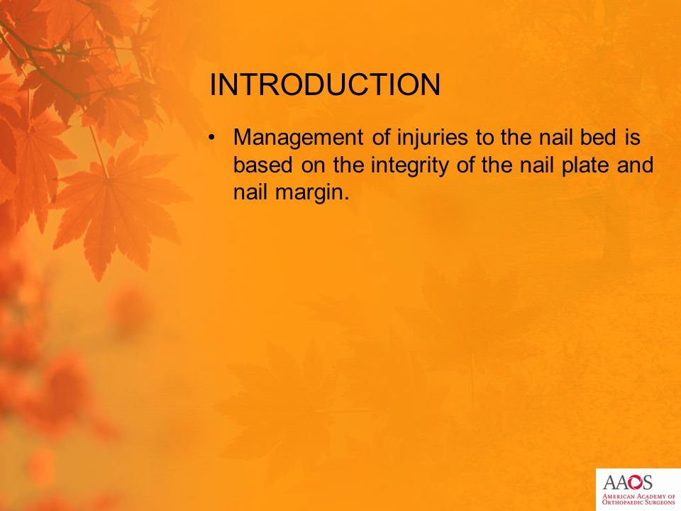 INTRODUCTION Management of injuries to the nail bed is based on the integrity of the nail plate and nail margin.