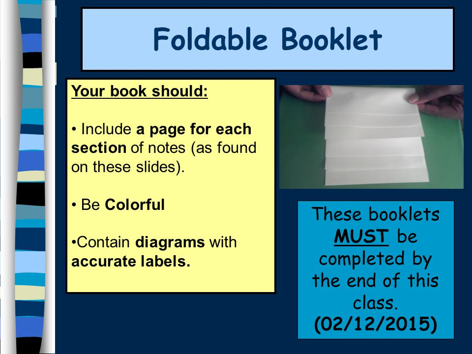 Foldable Booklet Your book should: Include a page for each section of notes (as found on these slides). Be Colorful Contain diagrams with accurate lab