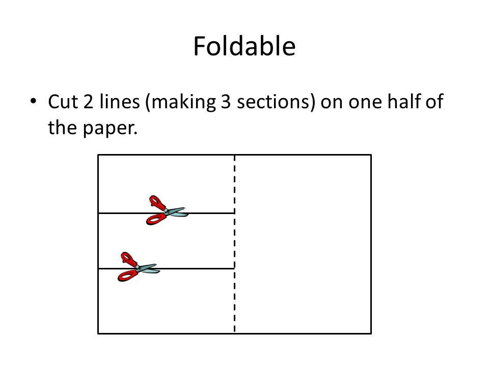 Foldable Cut 2 lines (making 3 sections) on one half of the paper.