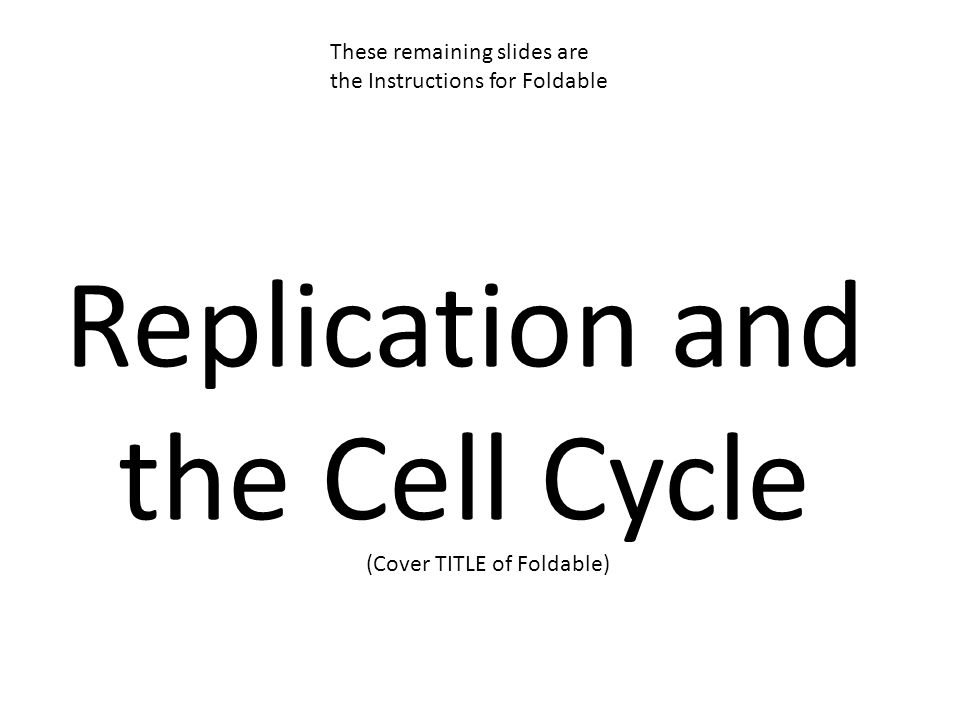 Replication and the Cell Cycle (Cover TITLE of Foldable) These remaining slides are the Instructions for Foldable