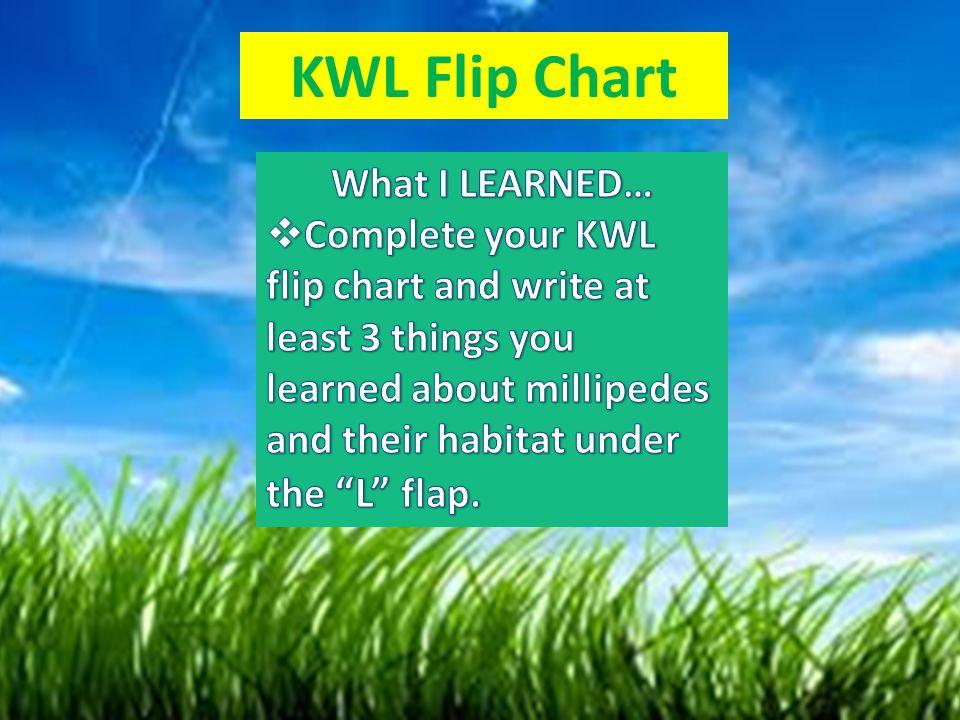 KWL Flip Chart