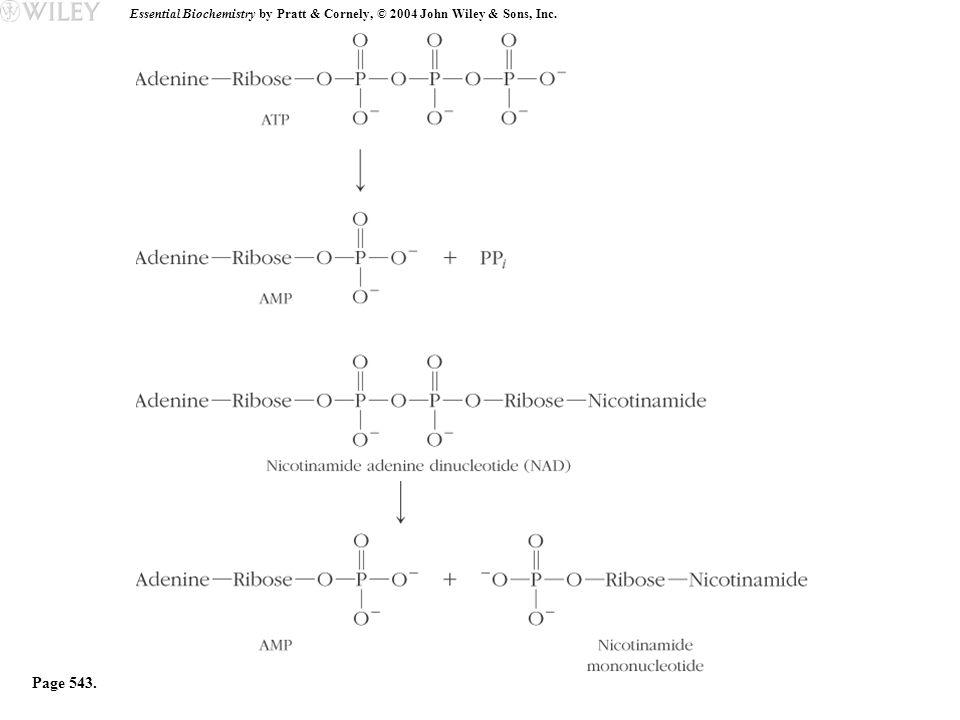 Essential Biochemistry by Pratt & Cornely, © 2004 John Wiley & Sons, Inc. Page 543.